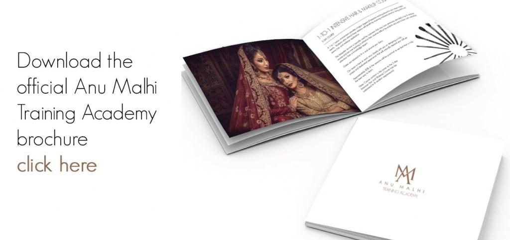 Academy Brochure v2